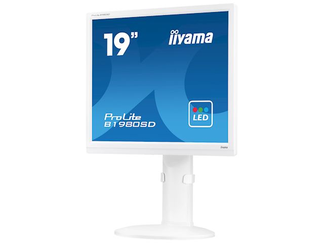 "iiyama ProLite monitor B1980SD-W1 19"" 5:4 Black, Height Adjustable, White image 2"